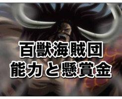 ワンピース 百獣海賊団